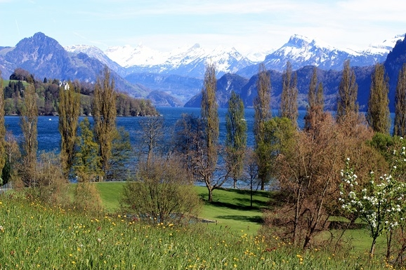 Home exchange in Switzerland,Luzern, Schweiz,home exchange in lucerne,Home Exchange & House Swap Listing Image