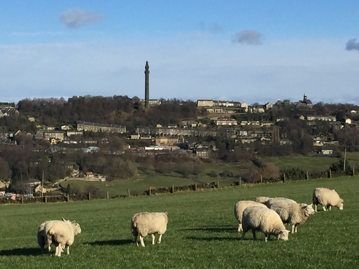 Home exchange in,United Kingdom,Halifax,Wainhouse Tower dominates the valley