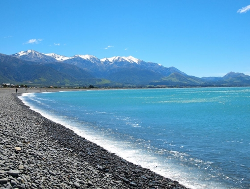 Boligbytte i  New Zealand,Kaikoura, Canterbury,Whales, seals & seafood.,Home Exchange & House Swap Listing Image