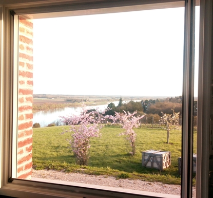 BoligBytte til,France,BLOIS,Flowering trees in March from a kitchen windows