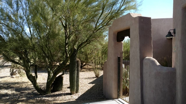 Come experience the heart of the Sonoran Desert.