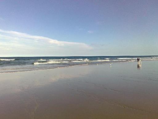 Home exchange in,Australia,PEREGIAN BEACH,local beach