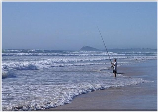 Home exchange in,Australia,POTTSVILLE,Pottsville beach fishing.