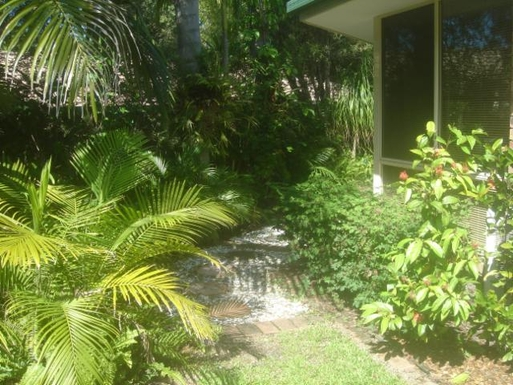 Home exchange in,Australia,PARKWOOD,Side of house tropical garden
