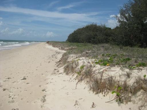 Home exchange in,Australia,WOORIM,Bribie Island beach