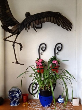 Home exchange in,Australia,DARLINGHURST,House photos, home images
