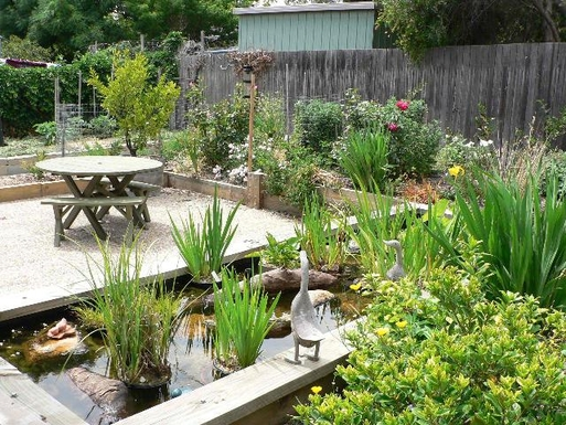 Home exchange in,Australia,CHIFLEY,3rd outdoor eating area next to fish pond