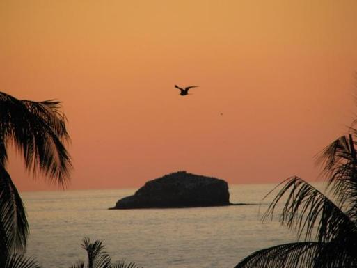 BoligBytte til,Mexico,Puerto Vallarta, 1hr, N,Boligbytte billeder