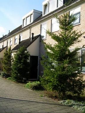 BoligBytte til,Netherlands,Utrecht, , 10k,,our front door (the trees have gone)