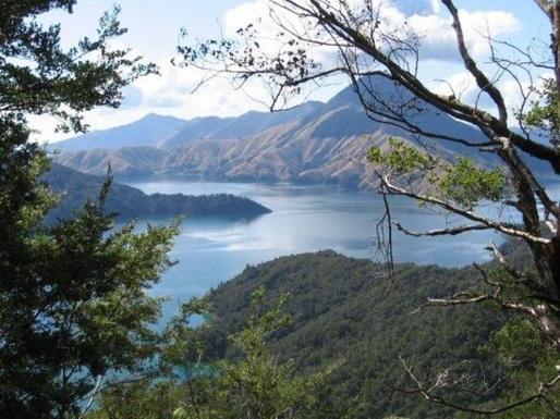 BoligBytte til,New Zealand,Wellington, 50k, N,nearby Marlborough Sounds