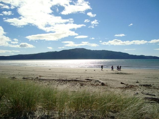 BoligBytte til,New Zealand,Wellington, 50k, N,our local beach