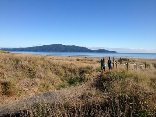 BoligBytte til,New Zealand,Wellington, 40k, N,Waikanae Beach looking towards Kapiti Island