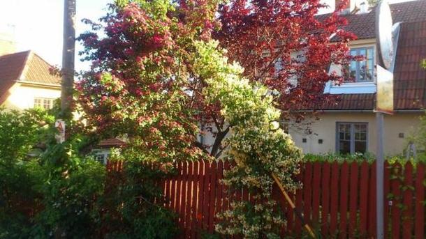 Échange de maison en Suède,Stockholm, 0k, S, Stockholms län,Stockholm - Period semi, close to city center,Echange de maison, photos du bien