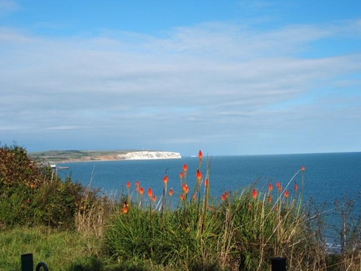 View of Culver Cliff - 10 mins walk