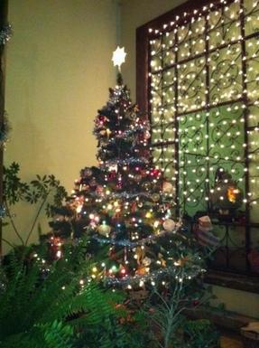 BoligBytte til,Mexico,Uruapan,christmas is always magical