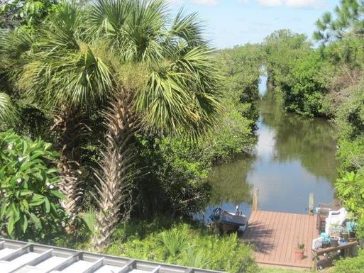 Backyard canal