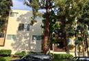 5950 Canterbury Drive #C105, Culver City, CA 90230