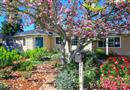 717 Ronald Court, Los Altos, CA 94024