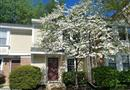 3378 Lakeside View Drive #142, Falls Church, VA 22041