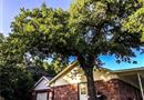 2763 Hanging Tree Road, Bowie, TX 76230