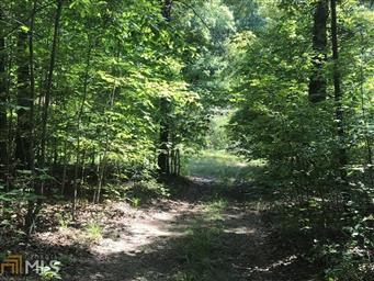 0 Cinnamon Lane #8641375, McCaysville, GA 30555