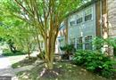 9608 Scotch Haven Drive, Vienna, VA 22181