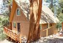 141 E Starr Drive, Big Bear City, CA 92314