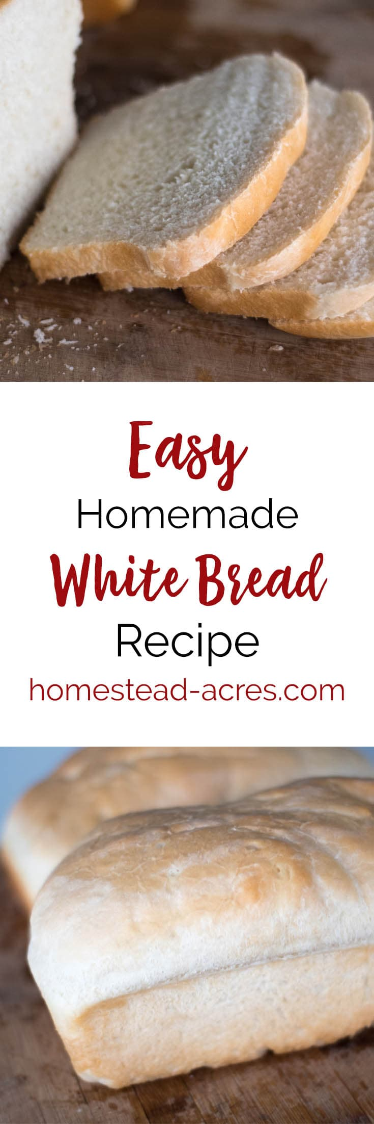 Basic White Bread Recipe. This is our family favorite homemade white bread recipe. This easy bread recipe also makes great dinner rolls and hamburger buns. #recipes #bread #breadmaking #breadrecipe
