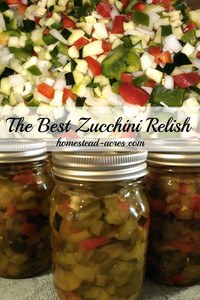 My Aunts Zucchini Relish is the BEST really! Everyone who's tried this relish just loves it. I've been making it for over 20 years and my Aunt for many years before then. This is a family favourite recipe that we enjoy making every summer. A great way to use up extra zucchini to.