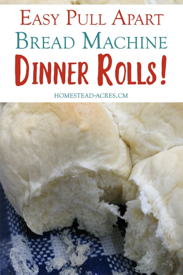 Easy Bread Machine Dinner Rolls