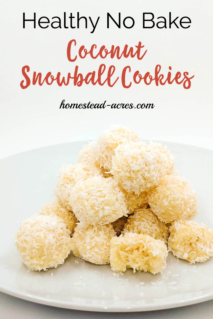 These healthy, no bake coconut snowball cookies are so easy to make! A favourite Christmas cookie on our holiday treat platters every year and gluten free too. Make a batch up in just a few minutes or freeze to enjoy later. #Christmascookies #snowballcookies #coconut #recipe #NoBakeCookies | www.homestead-acres.com