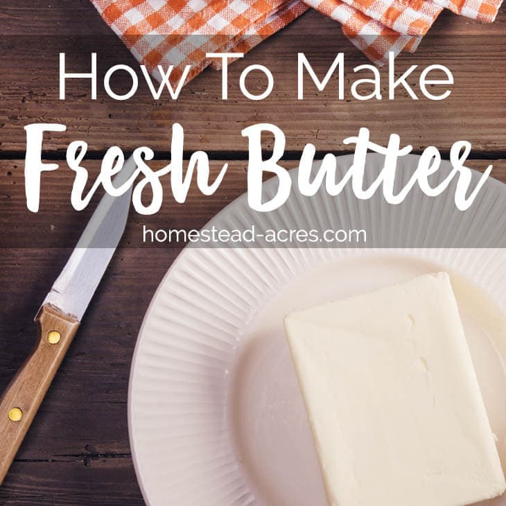 Homemade Fresh Butter Recipe www.homestead-acres.com