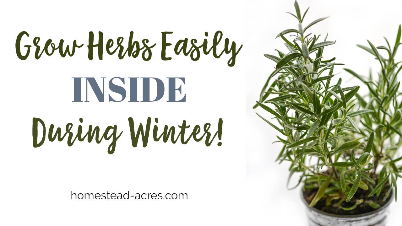Growing Food Indoors In Winter In Canada