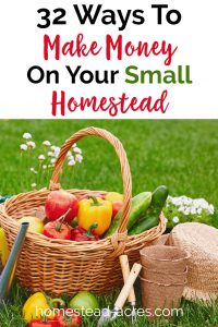 32 ways to make money on your small homestead, overlaid with garden harvest photo