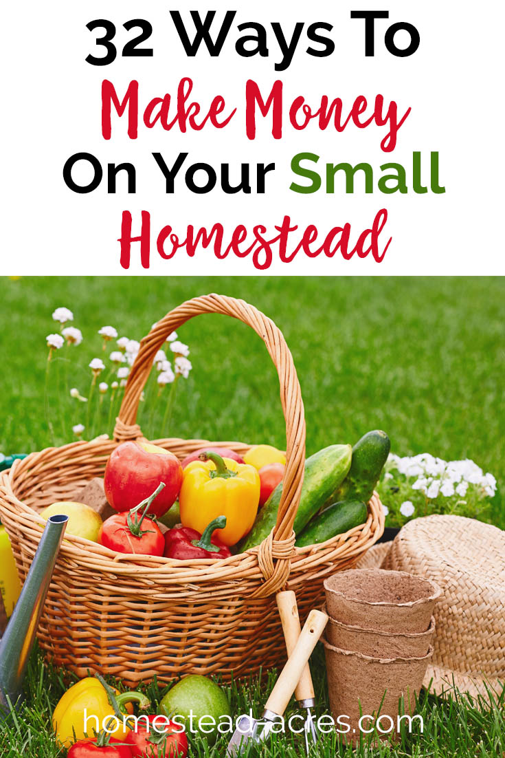 32 ways you can make money on your small homestead. Practical ideas for backyard homesteaders. #homesteading #makemoney #gardening