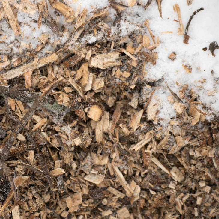 5 Tips for composting in the winter.