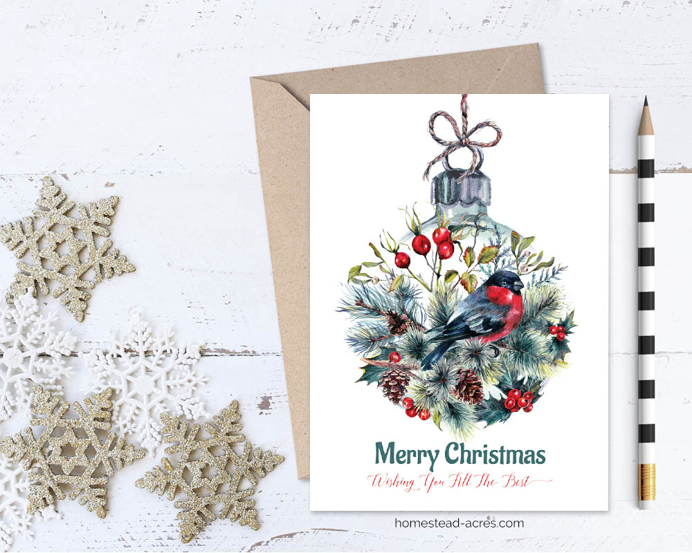 Printable Christmas Card: Finch & Ornament Merry Christmas ...