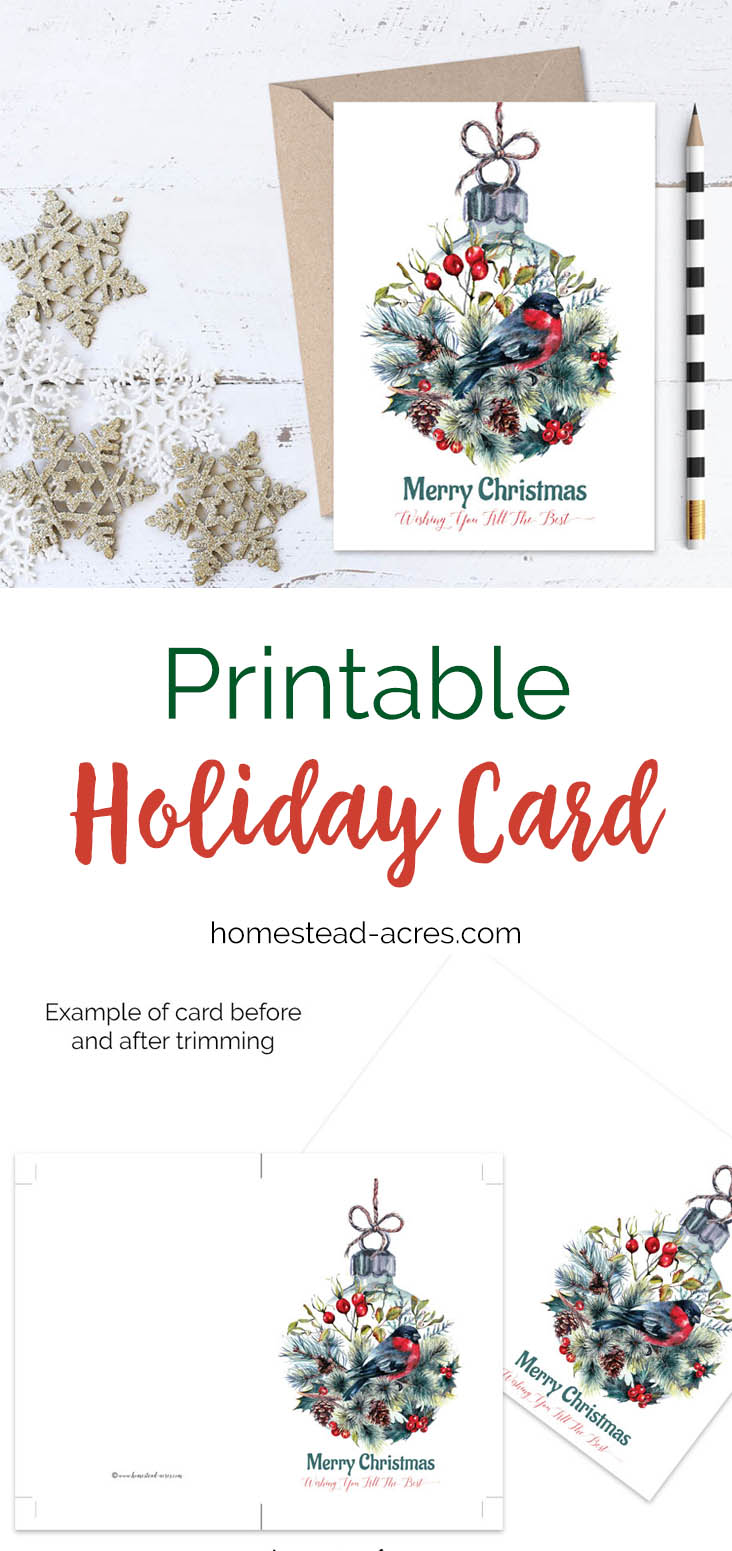 Printable Christmas Card Finch Ornament Merry Christmas