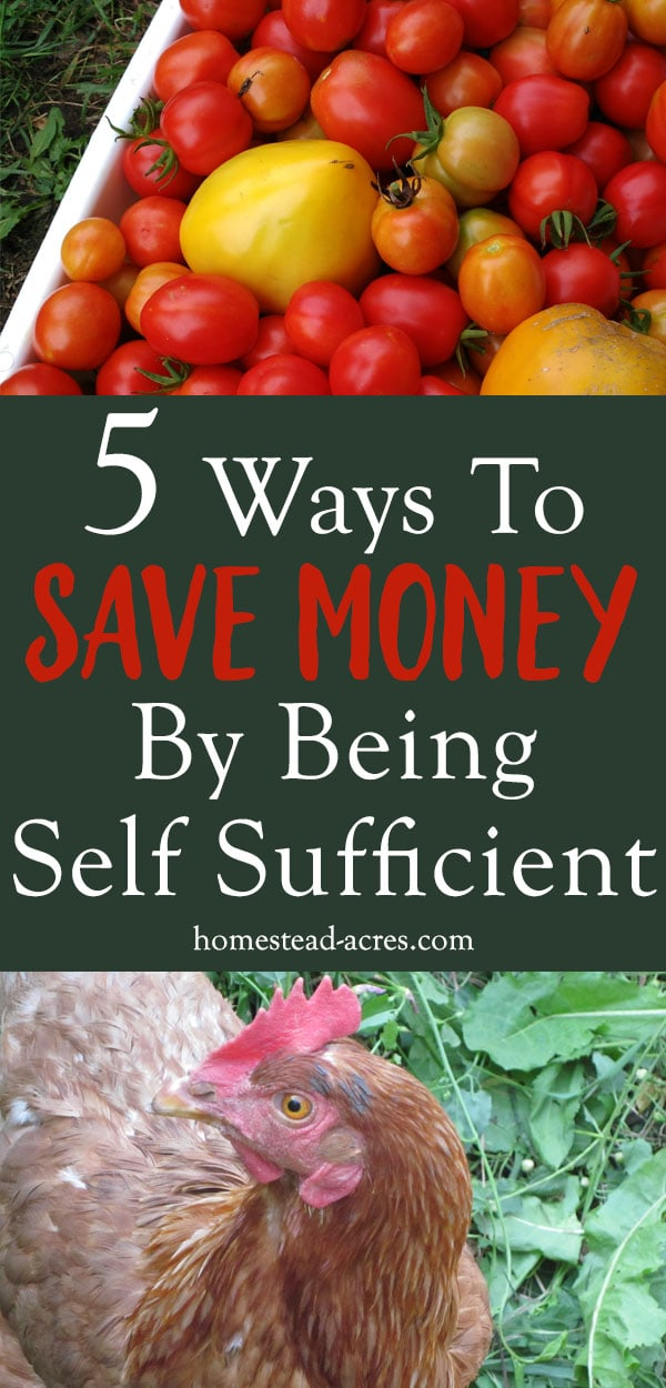 Tips For Being Self Sufficient. There are so many ways that you can save money by being more self sufficient. These ideas for simple living will help get you started growing your own food, making your own, and saving money.