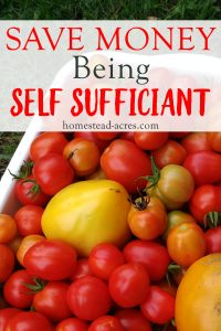 WAYS TO SAVE MONEY. Would you like to spend less? Of course you would! Here are 5 ways you can save money by being self sufficient.