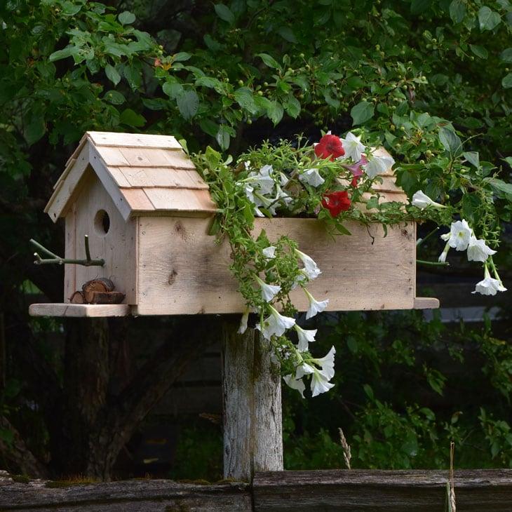 How To Make A Birdhouse Planter Box