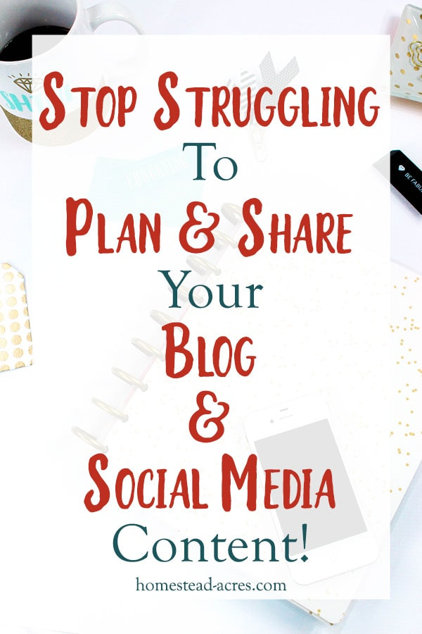 Planning Blog And Social Media Content