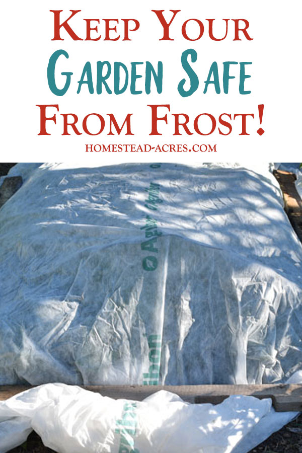 Keep Your Garden Safe From Frost
