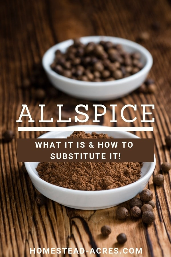 How To Make An Allspice Substitute