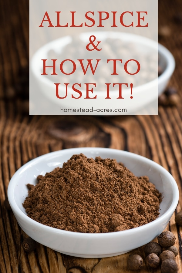 How To Use Allspice