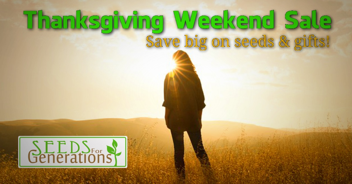 Thanksgiving Seeds Sale