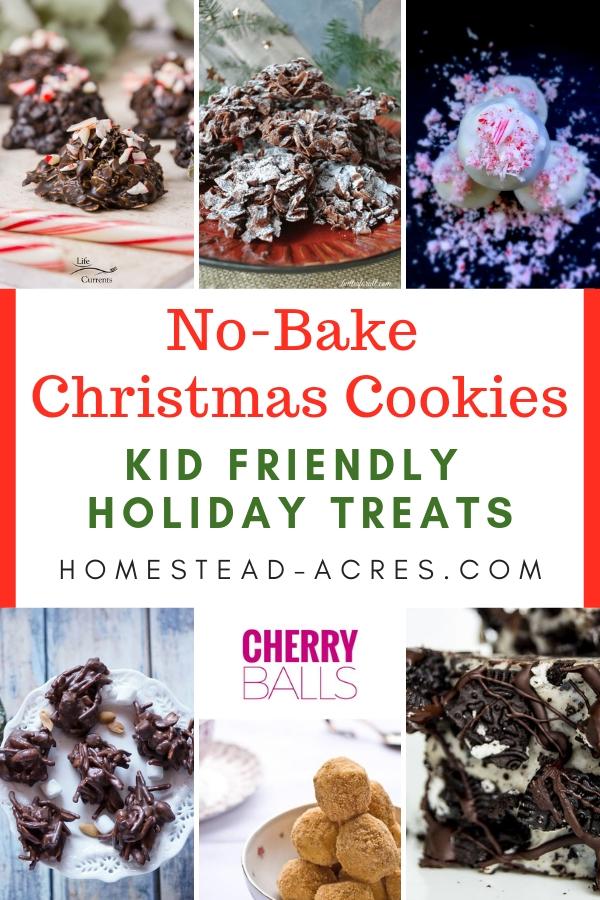 No-Bake Christmas Cookies Kid Friendly