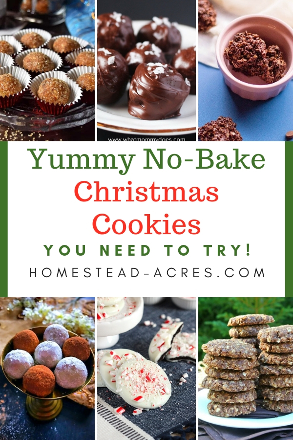 Yummy No Bake Christmas Cookies