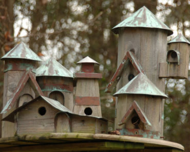 Elaborate outdoor wooden bird house design