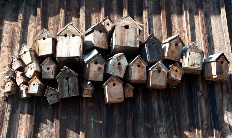 Cluster of rustic wooden bird houses attached to the side of a wooden shed.